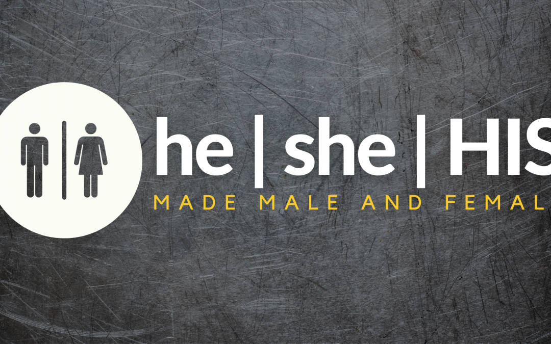 LIVE 9.12 – he/she/HIS